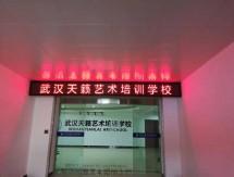 武汉天籁培训学校LED屏